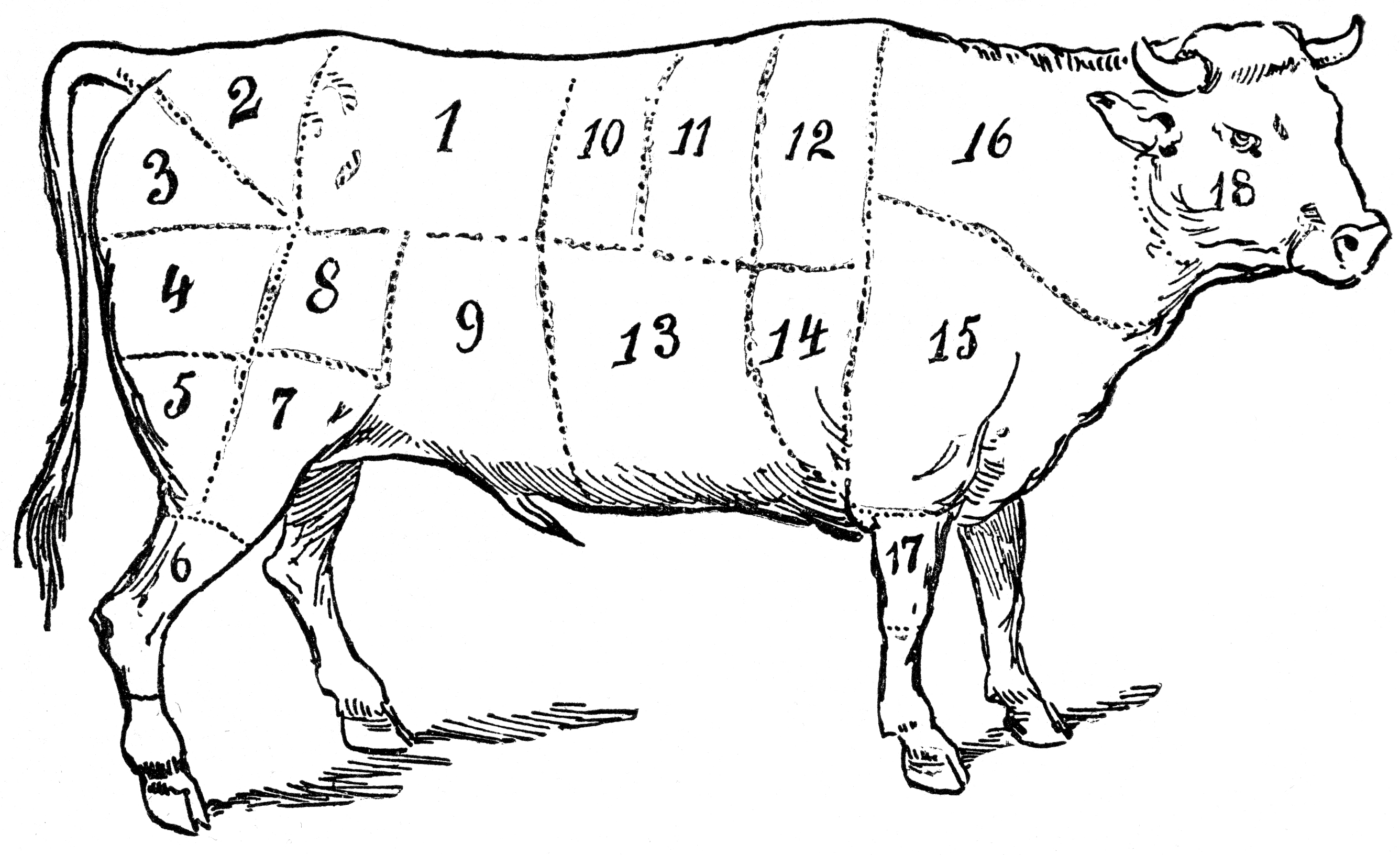 Butcher Diagram S - Wiring Diagram