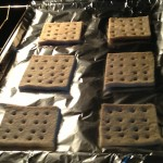 Put hardtack in oven to dry