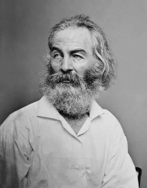 Walt Whitman, Matthew Brady Studio (SOURCE: Library of Congress)