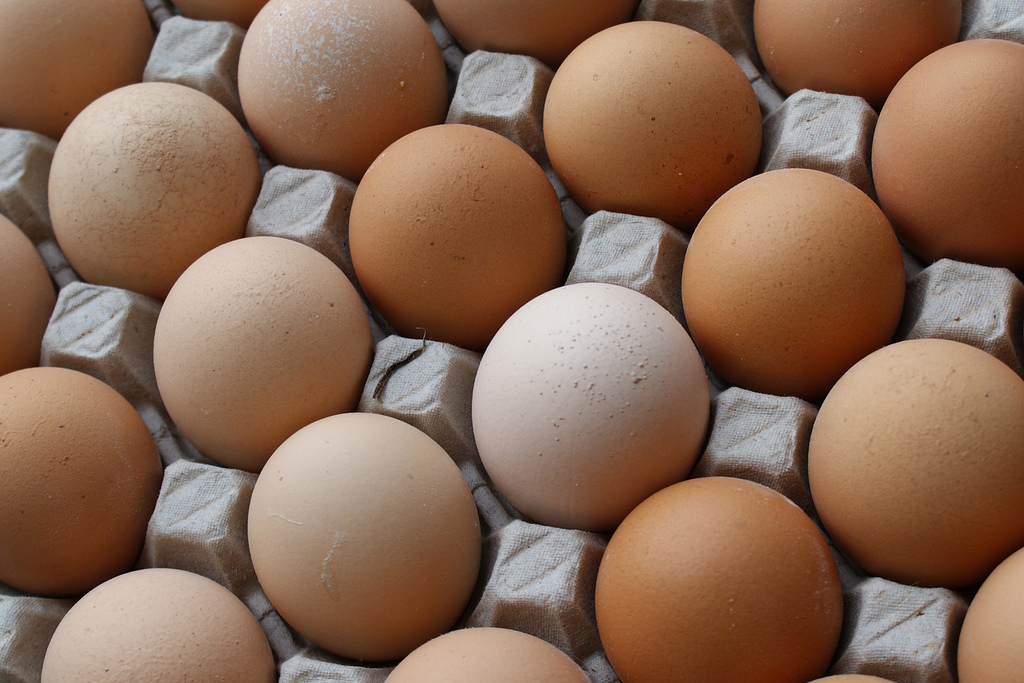 Eggs, Source: Flickr, pietroizzo - CCL