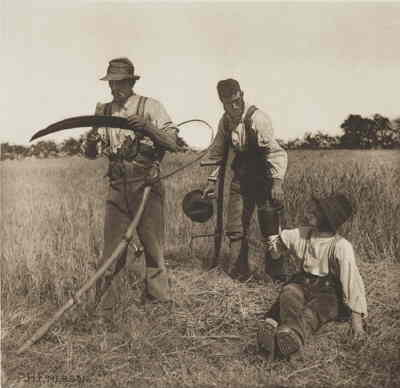 'In the barley harvest' by Peter Henry Emerson (1890)